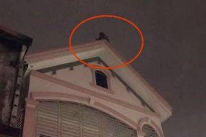 Leo nóc nhà hàng xóm tự tử khi nghe tin kho hàng cháy rụi