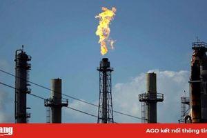 Giá dầu Brent đã chạm mức 'đáy' kể từ tháng 11-2002