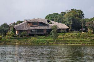 Ngôi nhà hình chiếc lá giữa rừng cây ở ngoại thành Hà Nội