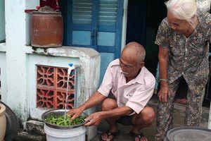 TP Hồ Chí Minh hỗ trợ người dân trong mùa dịch