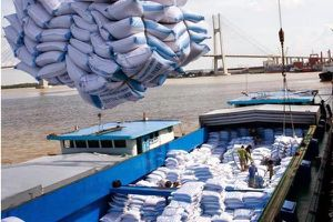 Kiểm tra xong, Bộ Công thương muốn xuất khẩu gạo 'có kiểm soát'