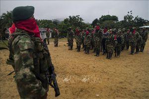 Nhóm vũ trang tại Colombia tuyên bố ngừng bắn đơn phương