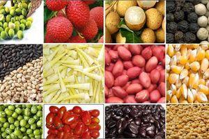 Xuất khẩu EU: DN cần sử dụng chứng thư điện tử kiểm dịch động, thực vật