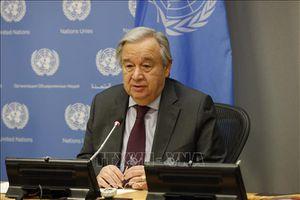 Liên hợp quốc kêu gọi cộng đồng quốc tế đoàn kết chống đại dịch COVID-19