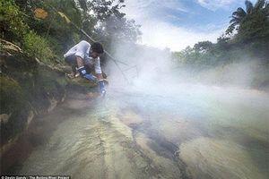 Chuyện kỳ lạ về khúc sông Amazon... sôi sùng sục