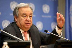 Liên hợp quốc kêu gọi đối phó quyết liệt hơn với dịch COVID-19