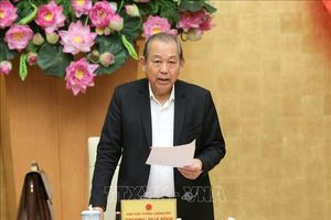 Phó Thủ tướng Trương Hòa Bình: Không để Nhà nước tiếp tục gánh nợ treo của 12 dự án yếu kém