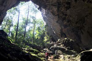Quảng Bình: Phát hiện 12 hang động chưa từng xuất hiện dấu chân người