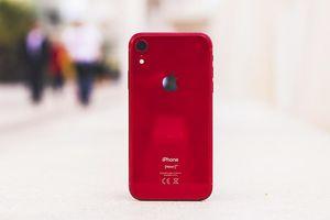 iPhone 9 giá rẻ đã chốt ngày ra mắt - Hứa hẹn hâm nóng lại thị trường