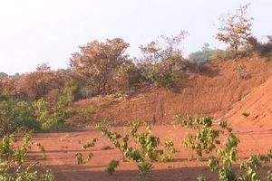 Đắk Nông: Xây dựng công trình hơn 45 tỷ đồng nay chỉ là khu đất trống