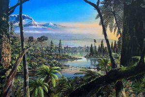 90 triệu năm trước, gần Nam Cực từng có một khu rừng nhiệt đới