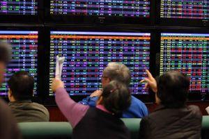 Tự ý mua bán cổ phiếu, hàng loạt cá nhân bị phạt