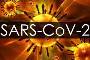 Chạy đua nghiên cứu vắc xin phòng Covid-19
