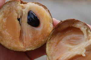 Chọn mua hồng xiêm cứ nhằm vào phần vỏ, đảm bảo chọn đúng quả chín ngon ngọt
