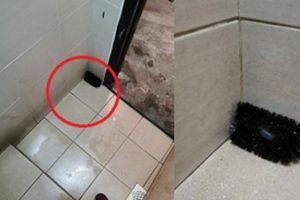 Thấy chiếc bàn chải để trong góc nhà vệ sinh, người đàn ông cầm lên thì phát hiện bí mật khó ngờ