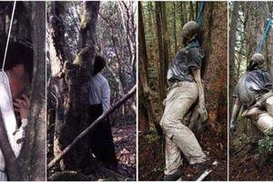Rừng tự sát ở Nhật Bản - Nơi hoàn hảo để chết