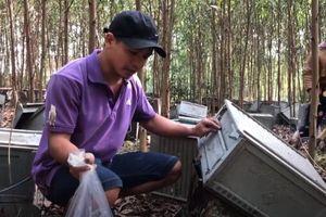 1 trại ong bị đập phá vì 'sợ dịch COVID-19'