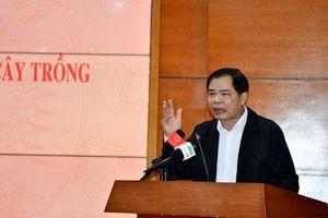 Bộ trưởng Nguyễn Xuân Cường lý giải giá heo vẫn cao
