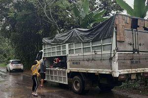 Sốc: Phát hiện 15 người trốn trong xe tải để đi đám ma