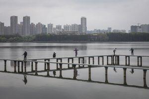 Hồi sinh ở Vũ Hán: Câu chuyện để New York, Bergamo dõi theo sắp tới
