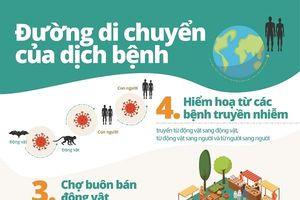WWF: 90% người Việt Nam ủng hộ đóng cửa thị trường buôn bán động vật hoang dã