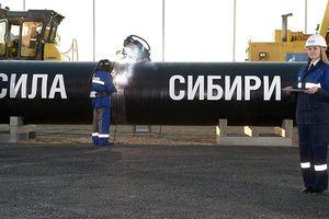 Gazprom sẽ nối dài đường ống Sila Siberia thêm 800km