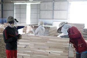 Ngành gỗ, dệt may cần hỗ trợ để vượt khó