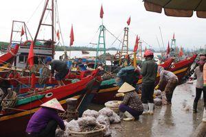 Cảng cá Lạch Vạn đông đúc, người dân thờ ơ với khẩu trang giữa đại dịch