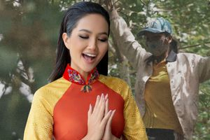 Đi hái hoa quả giữa ban trưa, H'Hen Niê vội vã trèo lên cành cây cao để… nhảy múa