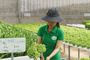 Doanh nghiệp nông sản sẵn sàng đón cơ hội hậu dịch bệnh