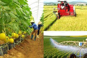 Tích tụ đất nông nghiệp để sản xuất hàng hóa: Cần hoàn thiện hành lang pháp lý