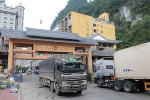 Trung Quốc siết chặt cửa khẩu, Bộ Nông nghiệp chỉ đạo khẩn