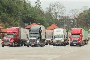 Dịch COVID-19: Nhiều giải pháp gỡ khó trong xuất khẩu hàng hóa tại cửa khẩu