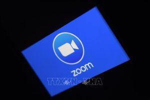 Thượng viện Mỹ đề nghị các nghị sĩ tránh sử dụng ứng dụng Zoom