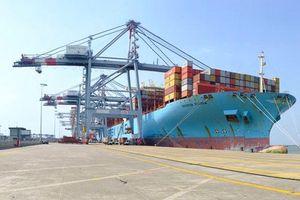 Lượng hàng hóa thông qua cảng biển tăng, hành khách giảm