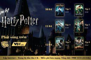Đón xem trọn bộ Harry Potter trên tivi tại nhà