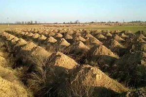 Ukraina: đào hàng trăm ngôi mộ để dọa người dân ở nhà
