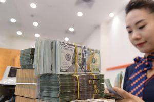 Tỷ giá giảm phù hợp với thực tế thị trường