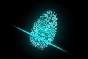 80% smartphone có thể bị đánh lừa bởi dấu vân tay giả