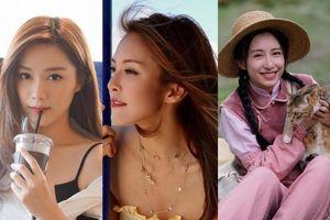4 nữ nghệ sĩ có triển vọng trở thành hoa đán của TVB: Thang Lạc Văn, Trương Hy Văn nhận kịch bản không ngừng tay