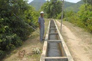 Vùng chuyển đổi từ trồng lúa sang cây màu cần hệ thống tiêu thoát nước