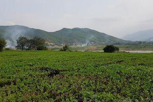 Quy định chuyển đổi đất nuôi trồng thủy sản sang đất ở, đất vườn