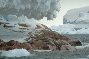 Tàu thám hiểm Nam Cực lạc đến 'hoang đảo ma' phủ đá hoa cương