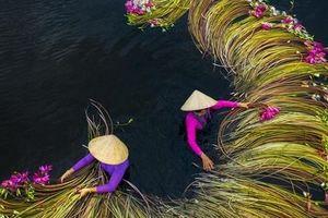 Việt Nam có 2 bức ảnh du lịch vào top đẹp nhất thế giới