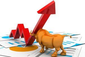 Thị trường khoác sắc xanh, VN-Index tăng điểm phiên thứ 5 liên tiếp
