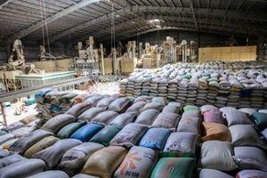 Danh tính 24 doanh nghiệp trúng thầu cung ứng gạo dự trữ quốc gia nhưng từ chối thực hiện theo cam kết