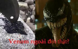 Phát hiện video ngoài đời thực về loài Symbiote trong 'Venom'