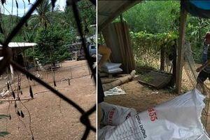 Bình Định: Bị khởi tố vì bắt đàn vịt trừ nợ