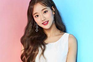 Naeun (April) dính tin đồn hẹn hò với hai nam idol cùng lúc vì ảnh hoa anh đào