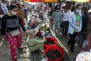 Campuchia nỗ lực đảm bảo nguồn cung lương thực trong dịch COVID-19